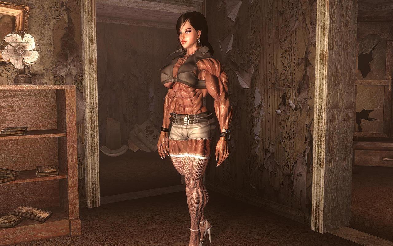 Fallout  Builder Mod