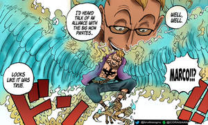 One piece marco 981
