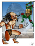 Predator Vs Ninja Turtle