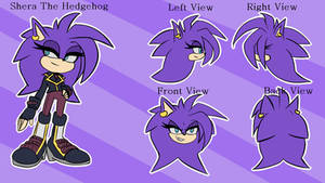 Shera the Hedgehog Ref Sheet by BeckyChelsea