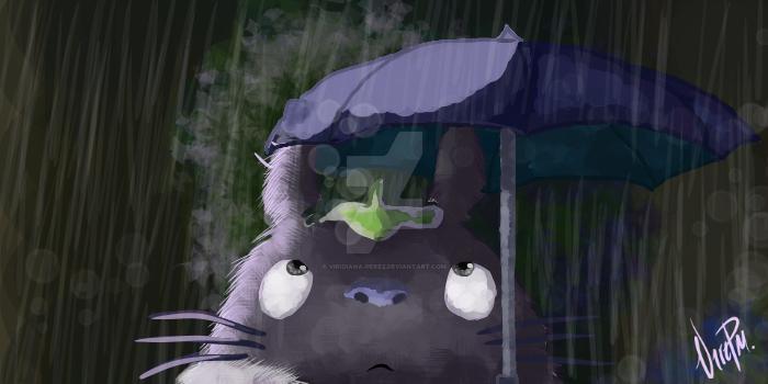 Totoro by Viridiana-Perez