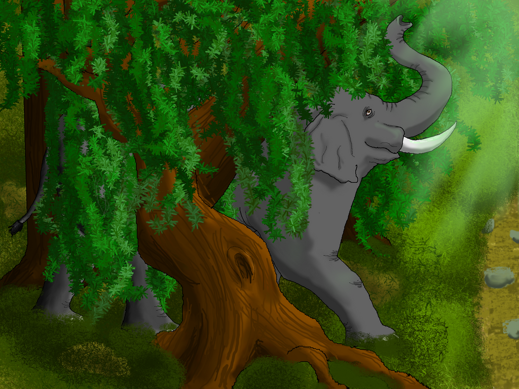 Elephant Stepping into Sunlight by Donnysgirl