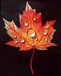 wet autumn maple leaf by Flrmprtrix