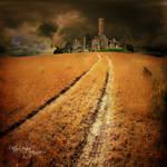 field by OkTaYBiNGoL