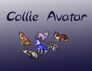 Pay-to-use Collie avatar