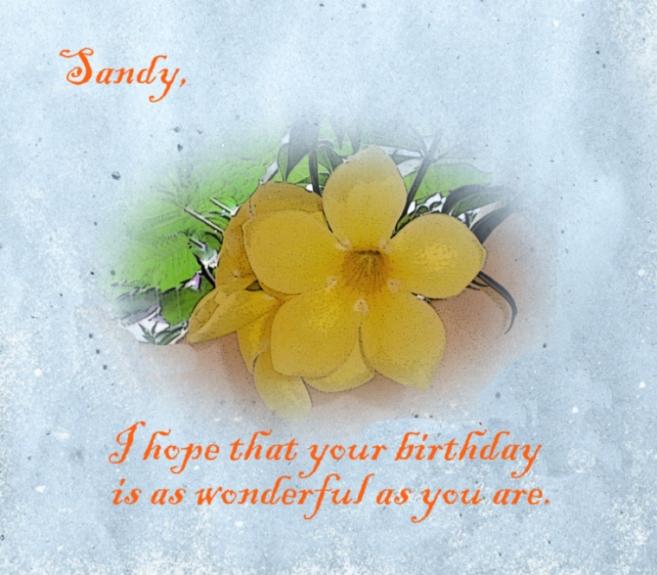 Happy Birthday Sandy By R0ckmom On Deviantart