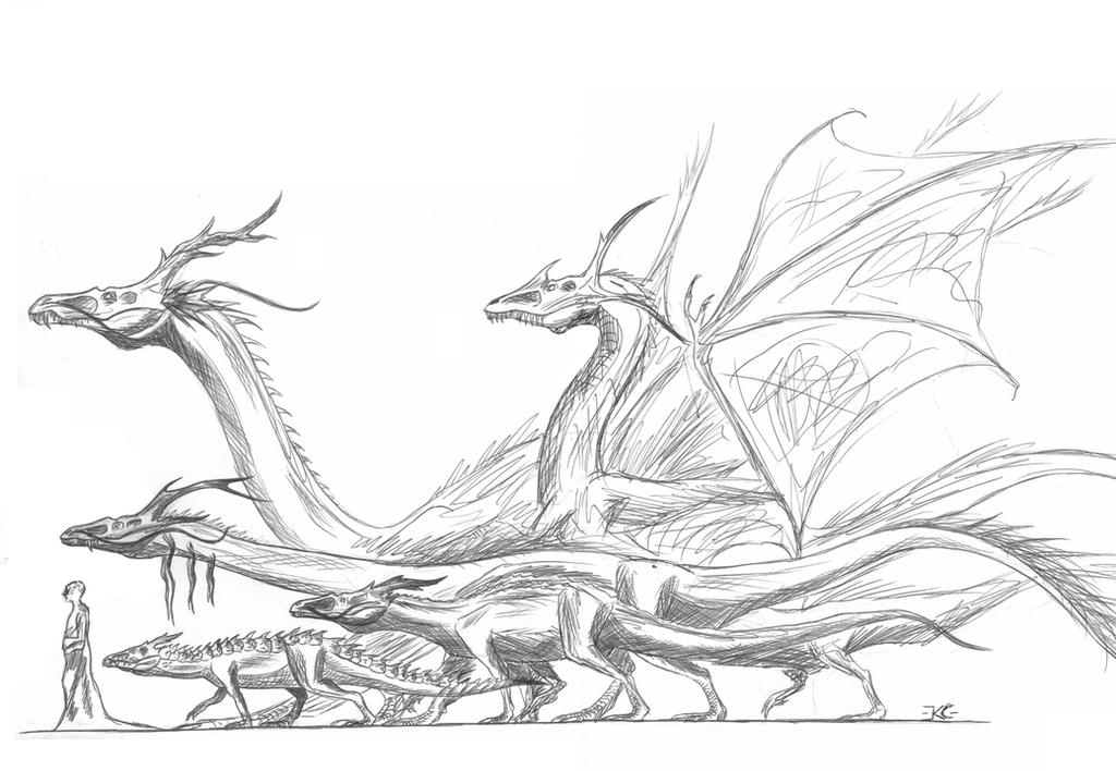 Asian dragon family by DragonEvolution