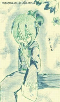 Shalom_in_green