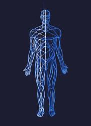anathomy with geometry by bdoroszko