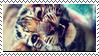 stamp_tiger_by_tuuuuuu-d61h1h0.png