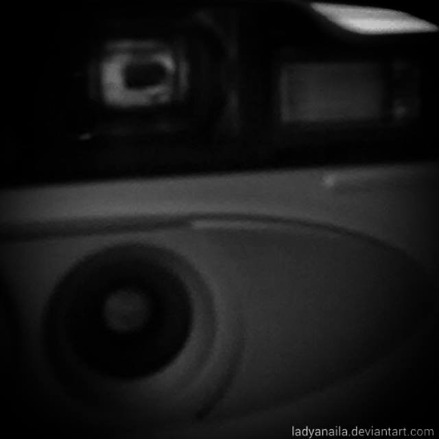 100. Camera by LadyAnaila