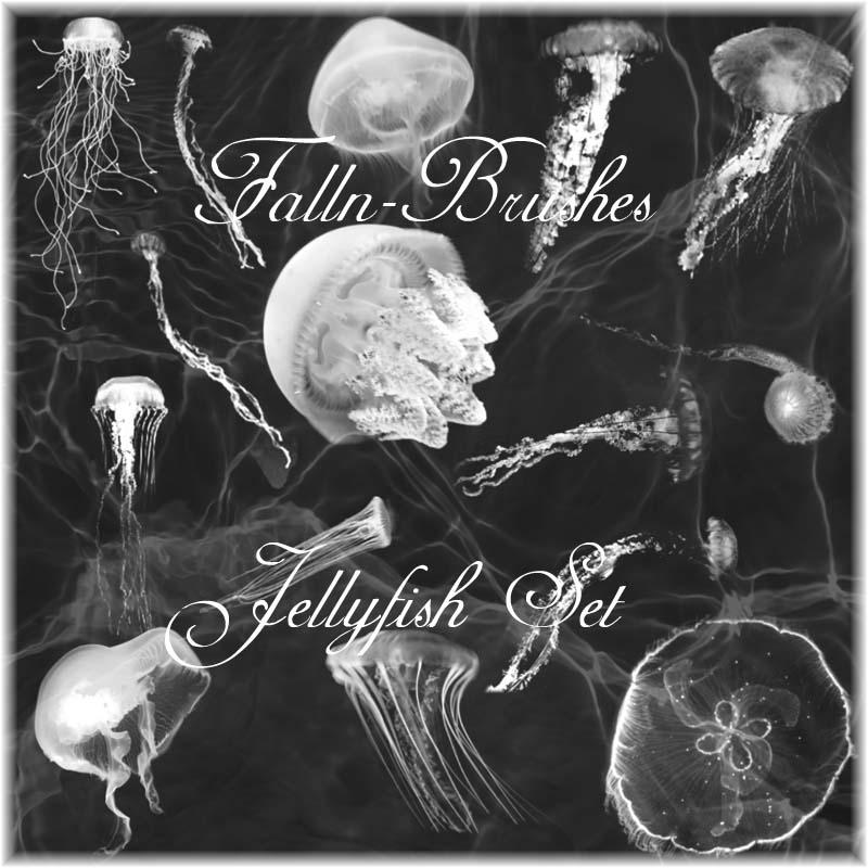 Jellyfish Brushes Set by Falln-Brushes