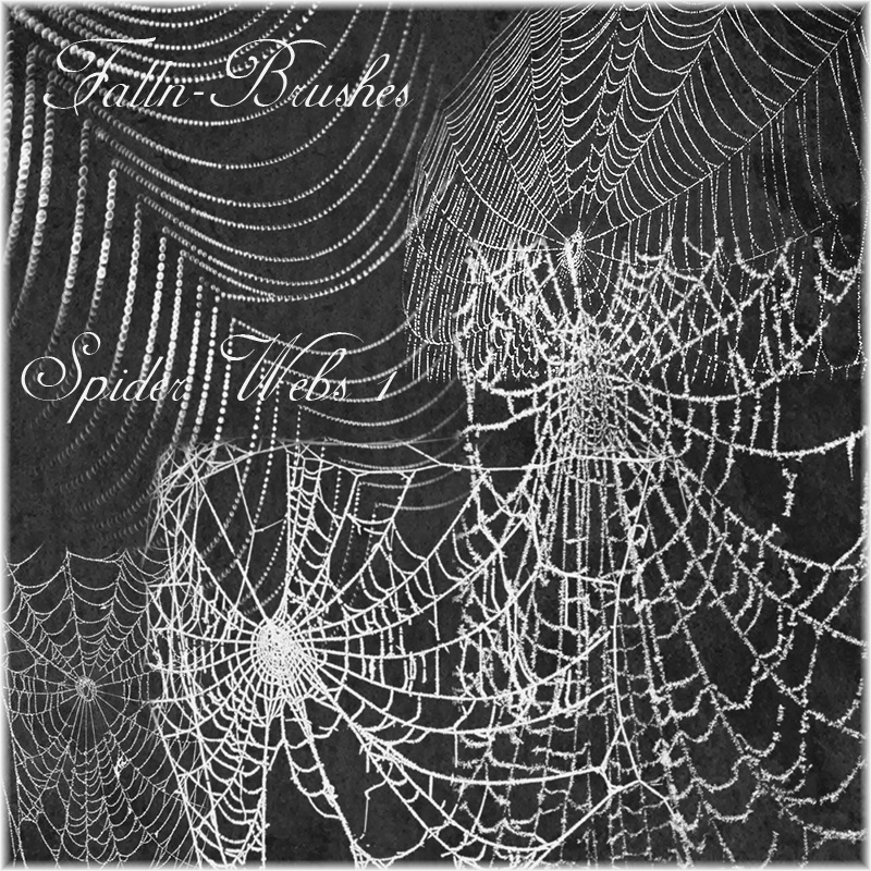 Spider Web Brushes Set 1 by Falln-Brushes
