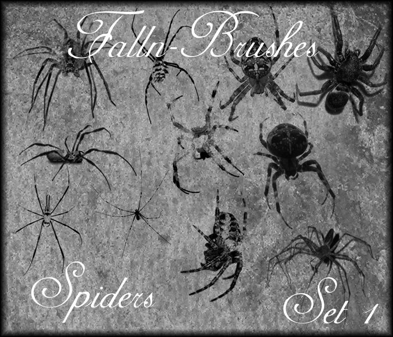 Spider Brushes Set 1
