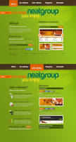 NeatGroup.pl ver 2010 by neatgroup