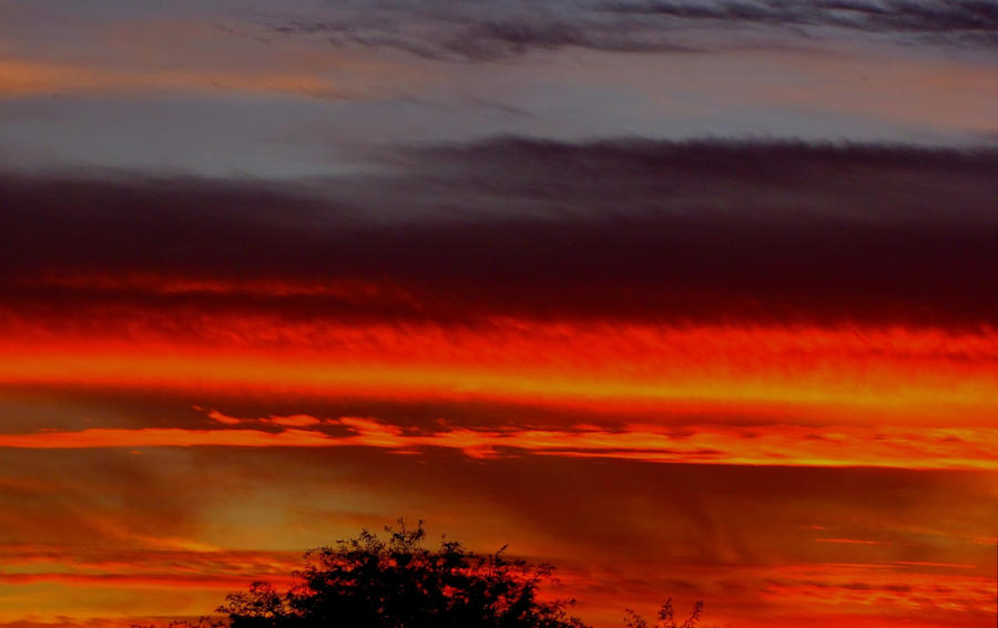 whiskey sunset... by shotsfiredimagedown
