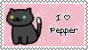 pepper by daukayai