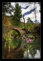 Pont de Borito by rogras