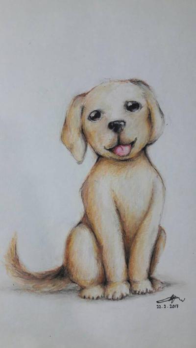 Pupper Labrador by CrazyDragon2000