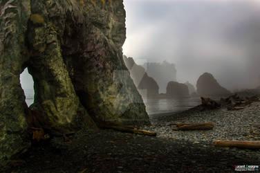 Destination Unknown: 'Forgotten Shores 1'