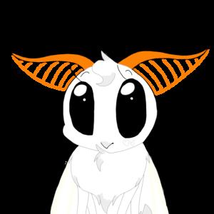 AskBandito's Profile Picture