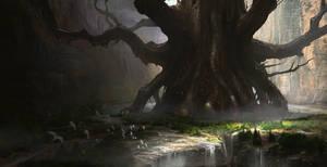 The Last Tree Dwelling
