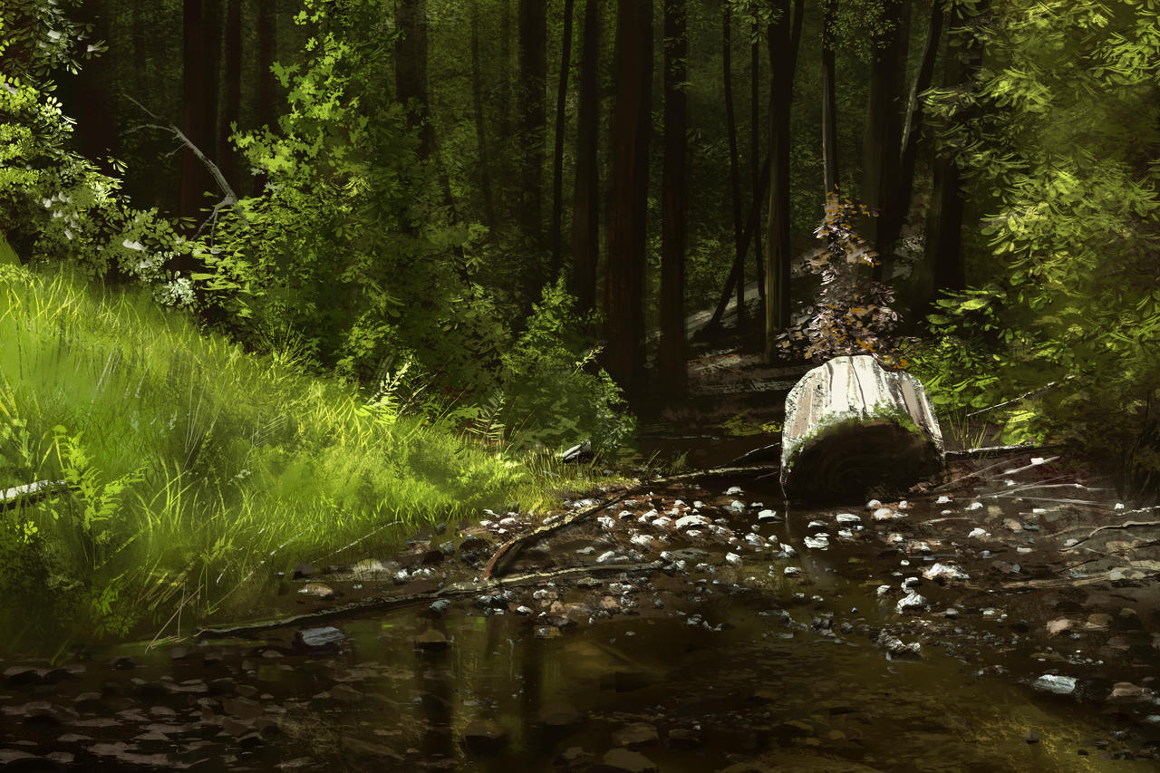 Forest Study by jonathanguzi