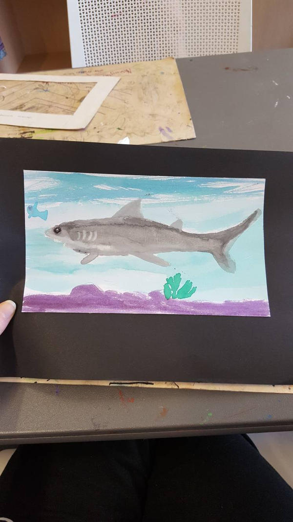 Shark water paint by SophieSharkley