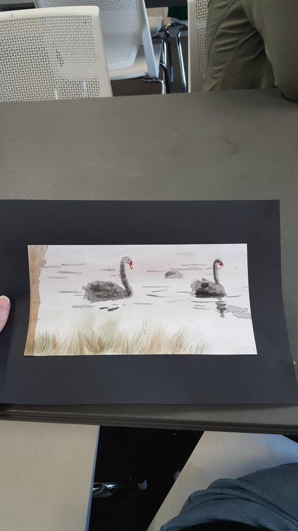 Black Swans on a lake by SophieSharkley