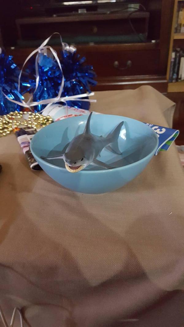 Shark Bowl by SophieSharkley