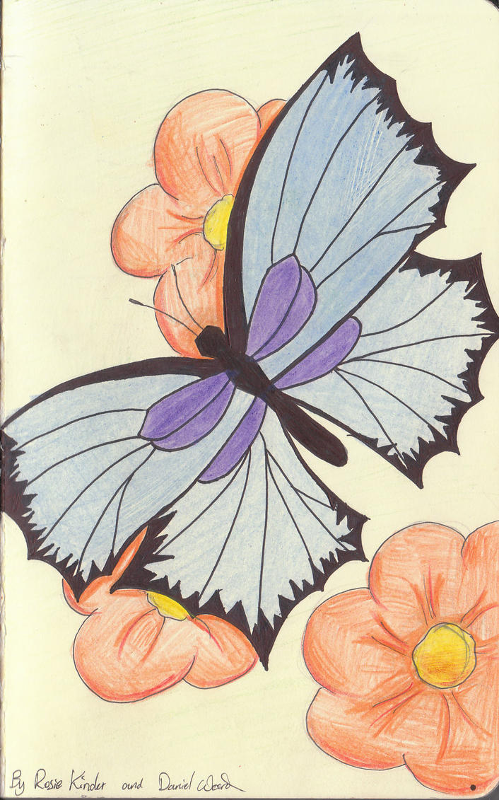 I am a butterfly essay