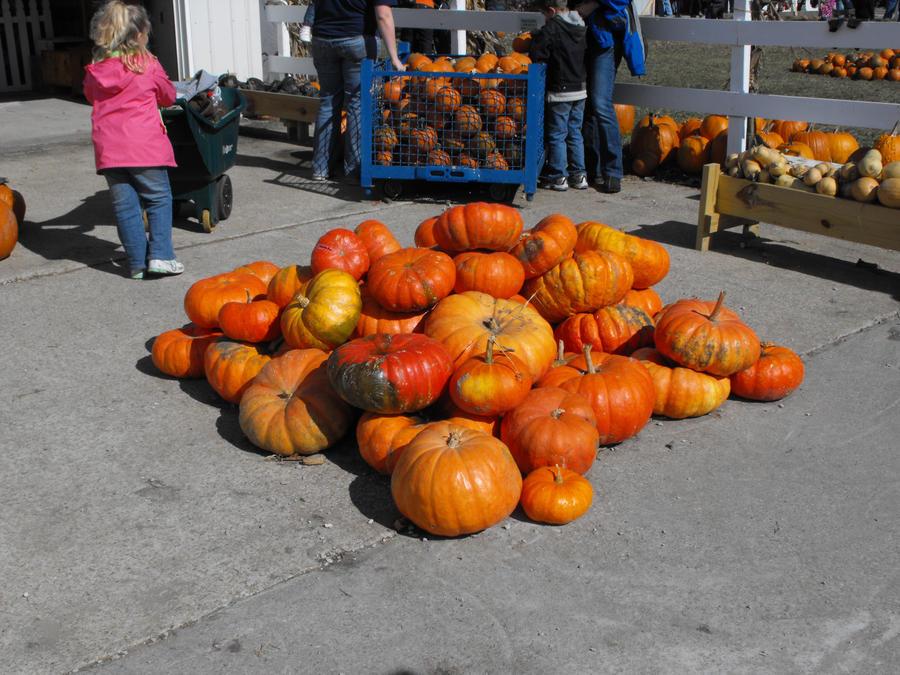 Pumpkin Pile by krissybdesignsstock