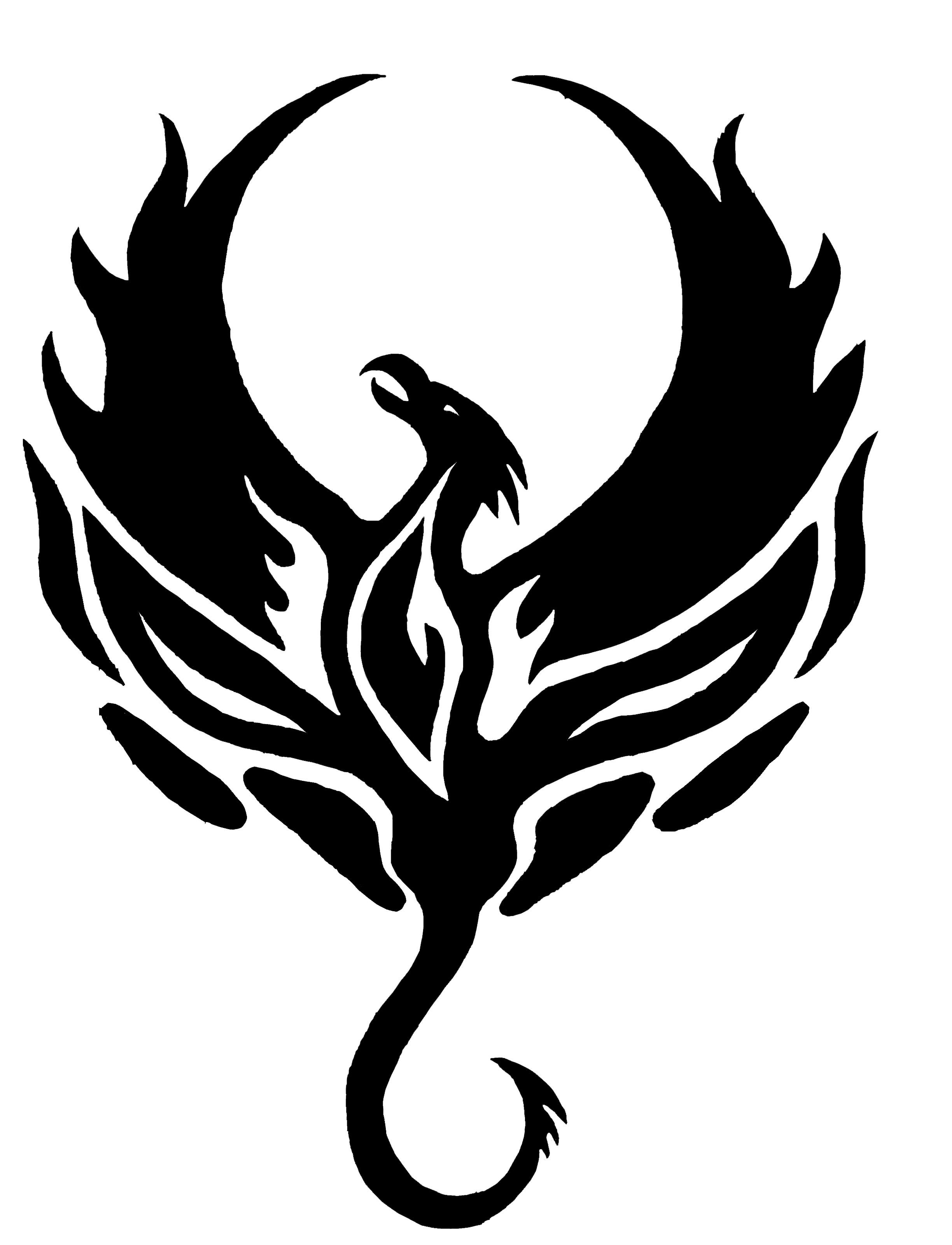 Anthony's Phoenix by angelic-euphoria on DeviantArt