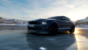 Shelby GT500 - 7