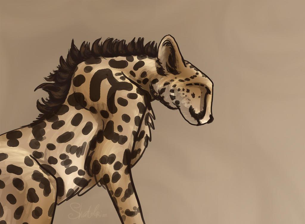 Cheetah by Shatobrion