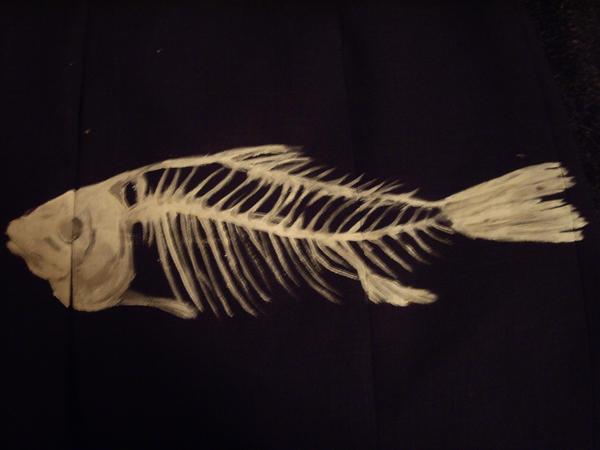 Goldfish Anatomy Body Eyes Ears Nose Gills Scales More