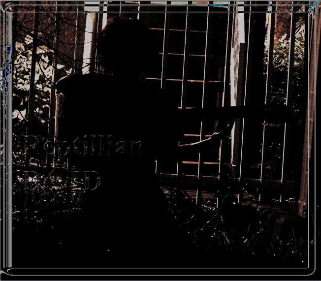 ReptillianSP2011's Profile Picture