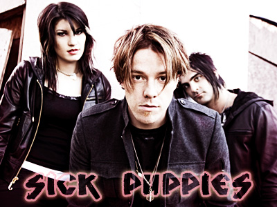 Sick Puppies -full band banner by poundingonthedoor