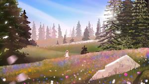 Rolling fields of wildflowers