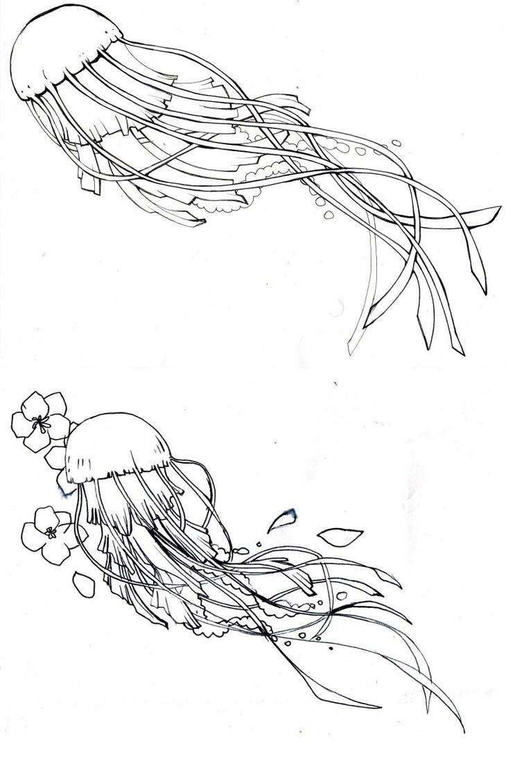 Line Drawing Jellyfish : Preliminary design jellyfish by kitton on deviantart