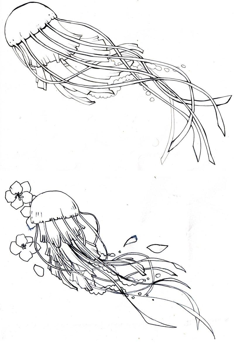 preliminary design: jellyfish by kitton