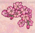 Tattoo: flowers