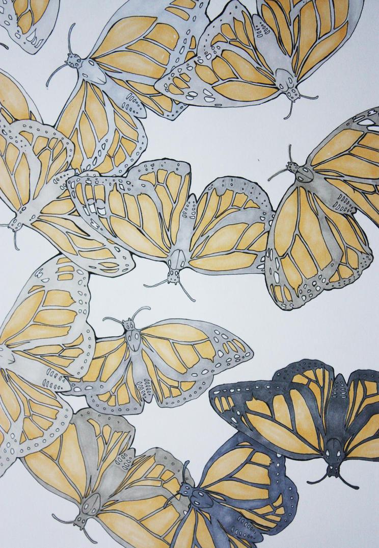 Monarch by kitton