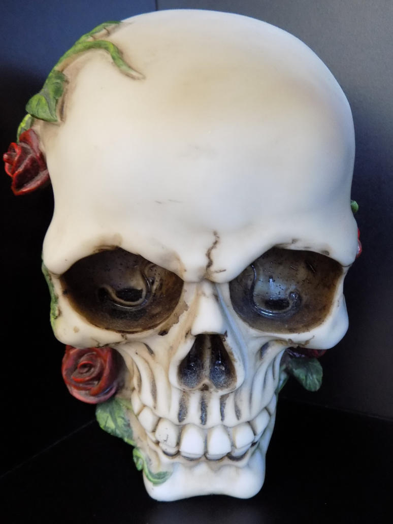 Skull and Roses by ZombieInn