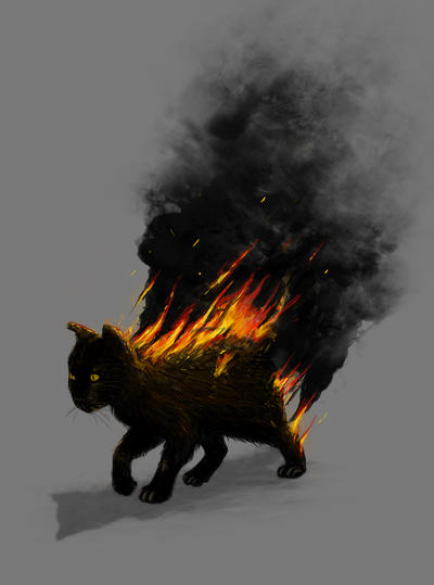This Cat Is On Fire by nicebleed83
