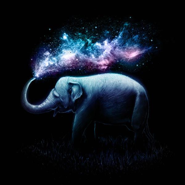 Elephant Splash by nicebleed83