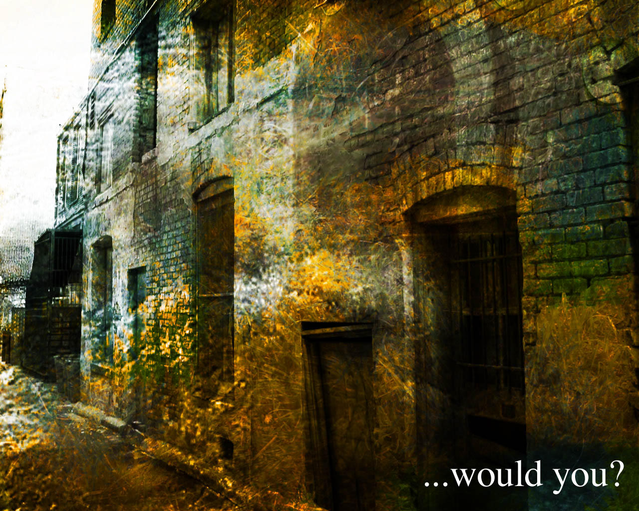 - Would You by outthere