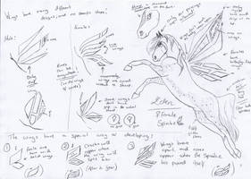 Spiralae Quick Info Sheet by Crystal-Cinders