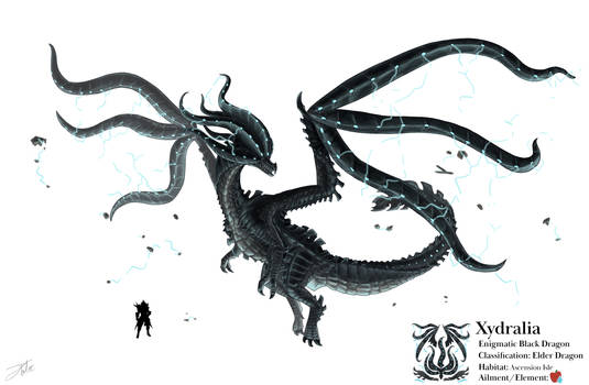 Xydralia - Monster Hunter Fan Concept