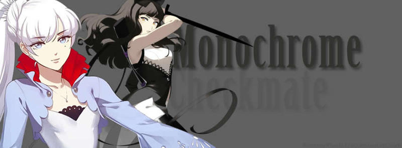 Monochrome Banner by FantasyFinale12